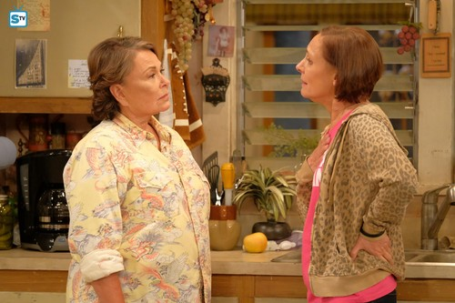 Roseanne fond d'écran called Roseanne Revival - 10x01 - Twenty Years to Life - Roseanne and Jackie