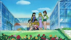 Sailor Scouts and Mamoru