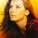 Sandra Bullock - sandra-bullock icon