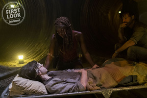 8x09 ~ Honor ~ Carl, Michonne and Rick