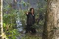 Season 8B First Look - Daryl - the-walking-dead photo