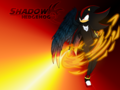 Shadow the Angel - shadow-the-hedgehog wallpaper