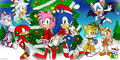 Sonic Christmas! - sonic-the-hedgehog photo