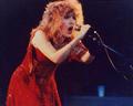 Stevie Nicks   The Wild Heart Tour 1983 2 - stevie-nicks photo