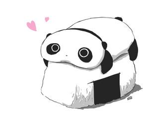 Sushi and Panda