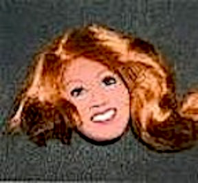 The Debbie Osmond (almost) Doll