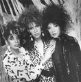 The Pointer Sisters - classic-r-and-b-music photo