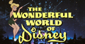 The Wonderful World Of Disney  - disney photo