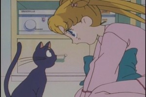 Usagi and Luna