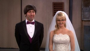 howard and bernadette Wedding