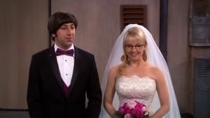 howard and bernadette Wedding