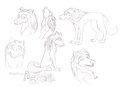 humphrey doodles (not mine) - alpha-and-omega fan art
