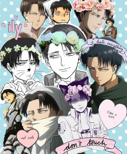 Shingeki no kyojin attack on titan gambar levi my baby shingeki no shingeki no kyojin attack on titan wallpaper entitled levi my baby shingeki no kyojin voltagebd Image collections