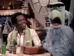 1977 Appearance The Muppet 显示