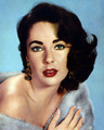 Screen Goddess  - elizabeth-taylor photo