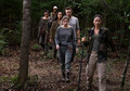 8x10 ~ The Lost and the Plunderers ~ Enid, Aaron, Cyndie, Beatrice and Kathy - the-walking-dead photo