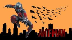ANT MAN City 3a