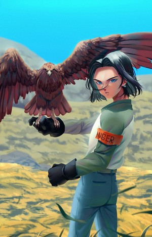 Android 17 eagle