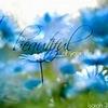 God-The creator photo called Beautiful Creation
