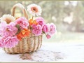 Beautiful Spring Basket - daydreaming wallpaper