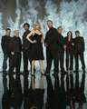 CSI Cast - csi photo