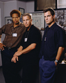 CSI: Vegas Cast - all-csis photo