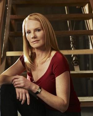 CSI: Vegas ~ Catherine Willows