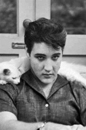 Elvis And His Cat