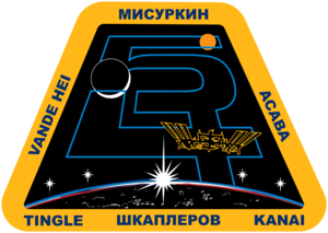 Expedition 54 Mission Patch