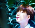 Jeong Sewoon দেওয়ালপত্র
