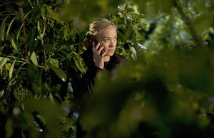 Kate morgan in the Shrubs