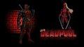 Lady Deadpool Wallpaper Brick Wall  - deadpool wallpaper