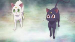 Luna and Artamas