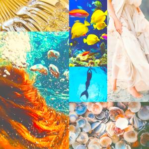 Mood Board - Ariel