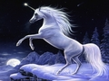 Moonlight Magic  - unicorns photo
