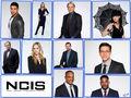 NCIS S15 Cast - ncis wallpaper