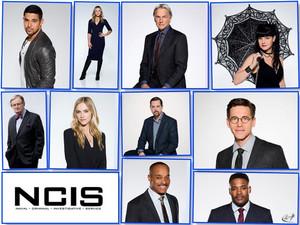 NCIS - Unità anticrimine S15 Cast