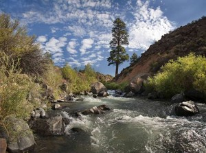 Questa, New Mexico