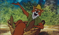 Robin Hood  - walt-disneys-robin-hood photo