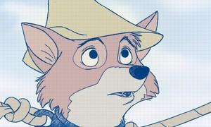 Robin 兜帽, 罩, 发动机罩