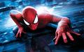 SPIDEY - spider-man photo