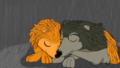 Sleeping in the Rain  - kate-from-the-movie-alpha-and-omega fan art