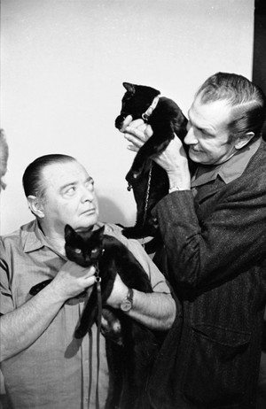 The Actors With Their Cats