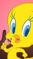 Tweety  - tweety-bird photo