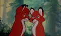 Vixey  - the-fox-and-the-hound photo