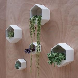 墙 Planters