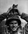 A Soldier And His Cat - cats photo