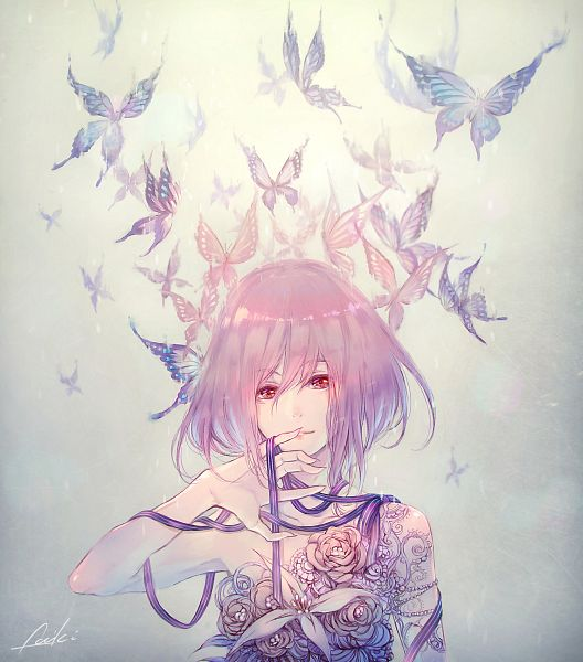 Butterflies Images Anime Butterfly Wallpaper And Background Photos