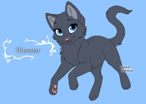 warrior cats character design templates by warriorcatscrazy d4h6adb
