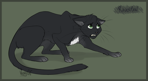 warrior cats ravenpaw door vanycat d9pqq3y